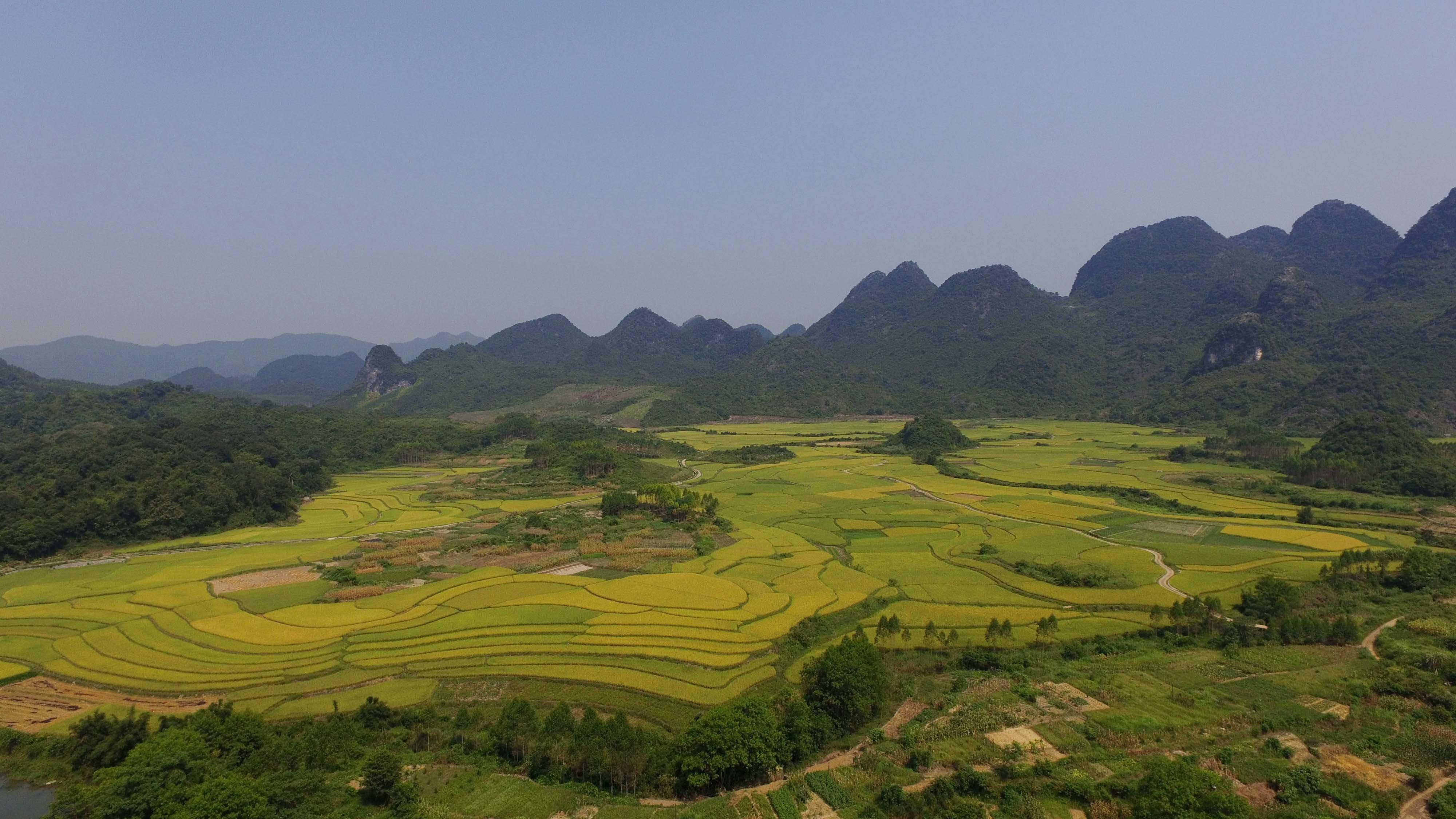 图3:7月26日,在融安县大良镇樟木屯航拍的田园风光.