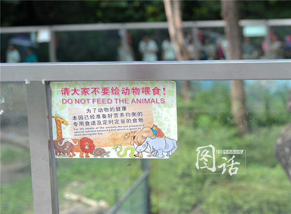 """""""禁止喂食""""被忽视 游客动物园投食成风"""