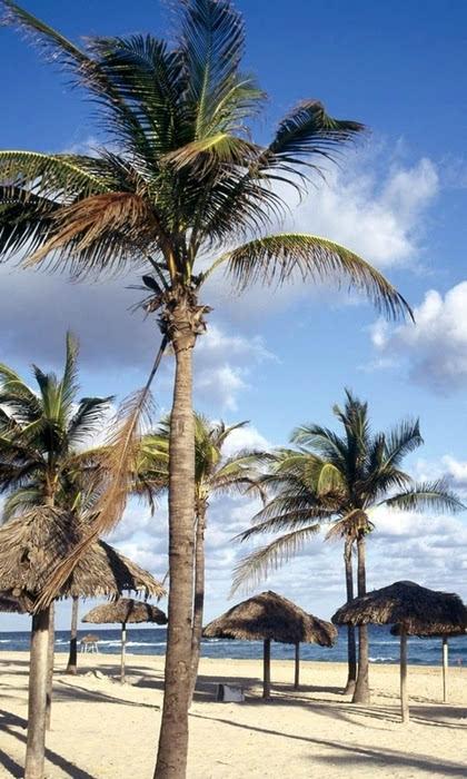 加勒比海盗风景高清手机壁纸