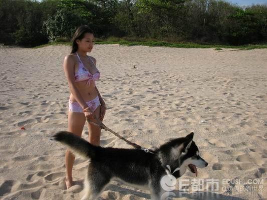 女人跟狗做的照片