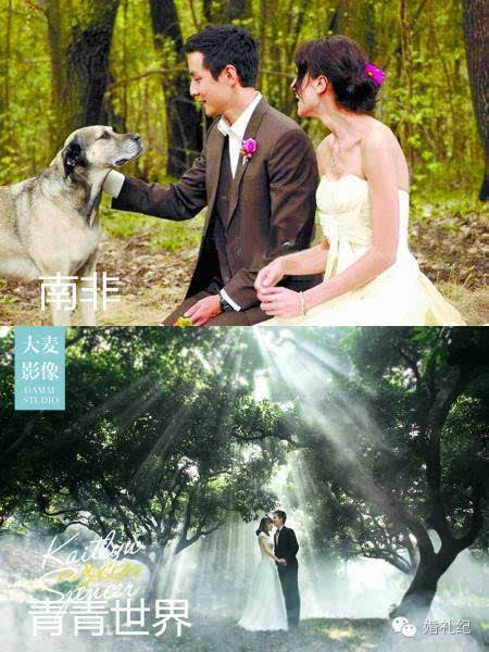 吴彦祖南非婚礼_(梦幻雨林,花丛) 没有吴彦祖式的南非森林婚礼,你可以有呼吸般清新,云