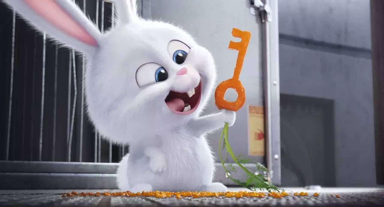 影向标 | 《爱宠大机密》里最萌还是那只兔子