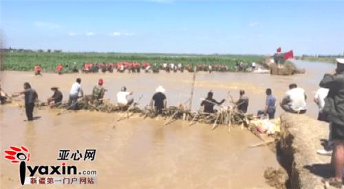 新疆塔城地区沙湾县3000亩棉田突遇洪水消防联合多