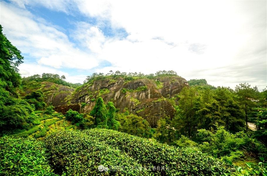 武夷山,充满神话色彩的岩茶故乡