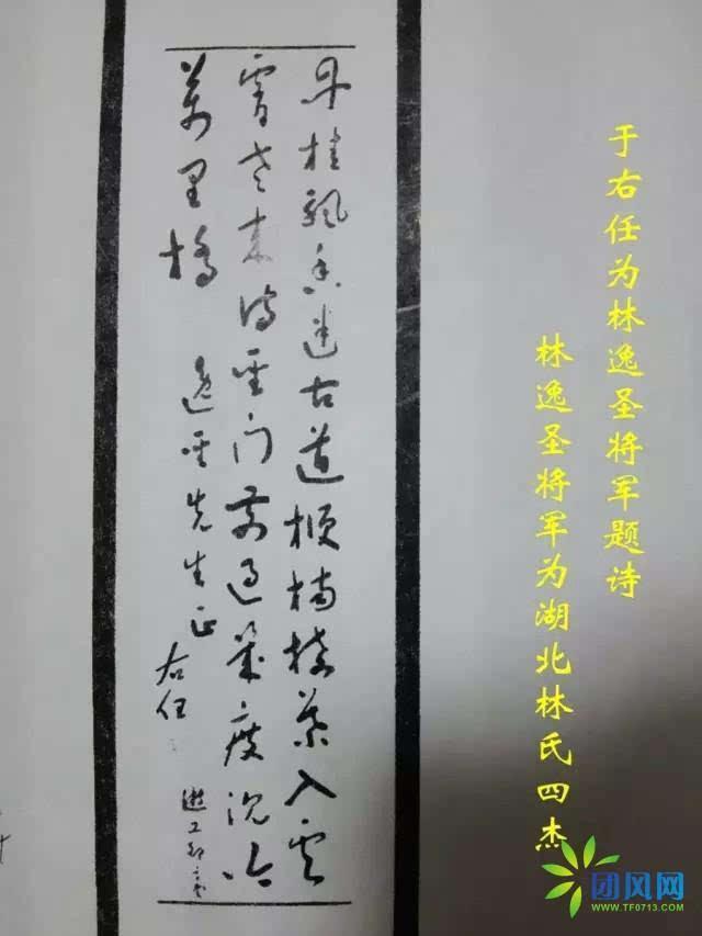 蔡元培曾为黄冈林氏族谱作序图片
