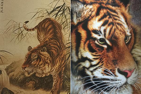 动物精微素描照片高清