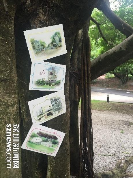 一套手绘校园明信片