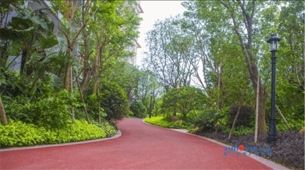 海峡国际湾区:小区有条800米长的森林跑步道图片