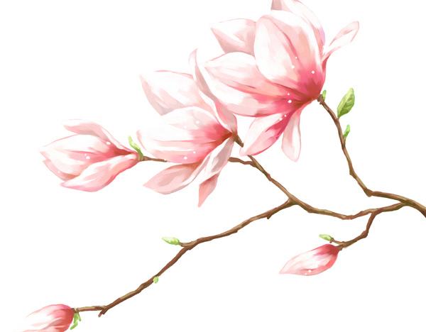 手绘桃花步骤图解