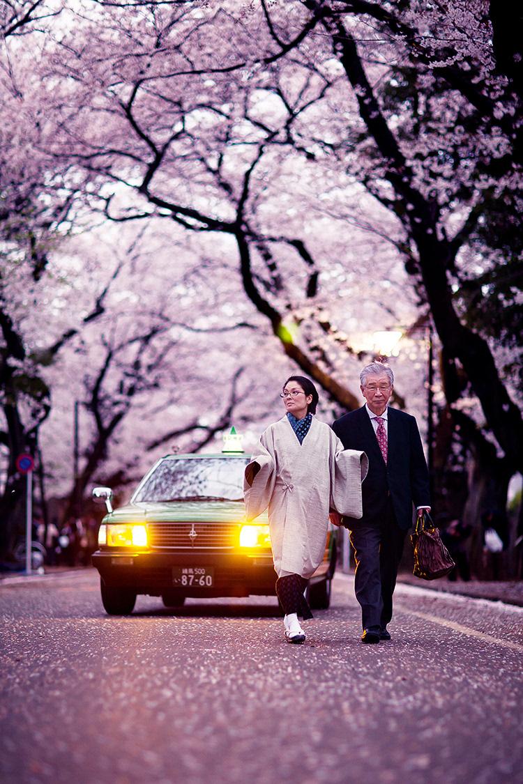 一对老年夫妇徜徉在樱花树下,身后的出租车不忍打扰,准备缓缓地绕过