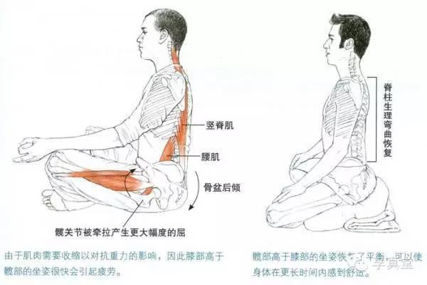 ,因为腿部是由腰椎、尾椎所控制,最关键的既是海底轮.   三、打坐