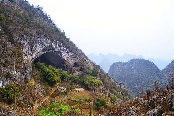 紫云县有多少人口_下楼就到学校 住进紫云台,告诉你学校在家门口是什么样的(3)