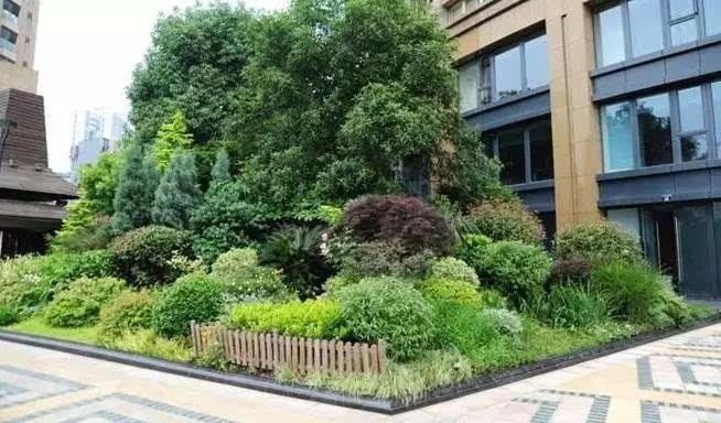 园林花境怎样配置?配置模式和应用要求有哪些?