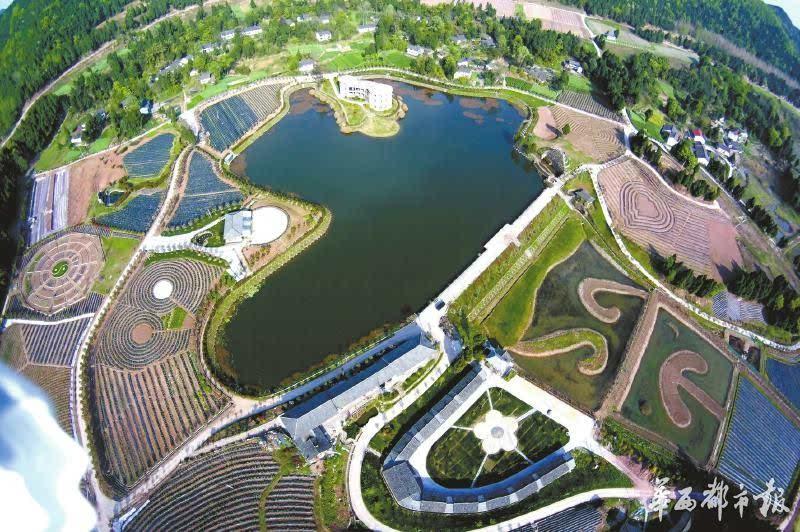依托有机农业 打造中国西部现代农业公园图片