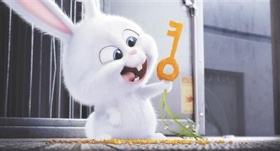 """其它 正文  """"从《疯狂动物城》里的小兔子朱迪,到《爱宠大机密》里的图片"""