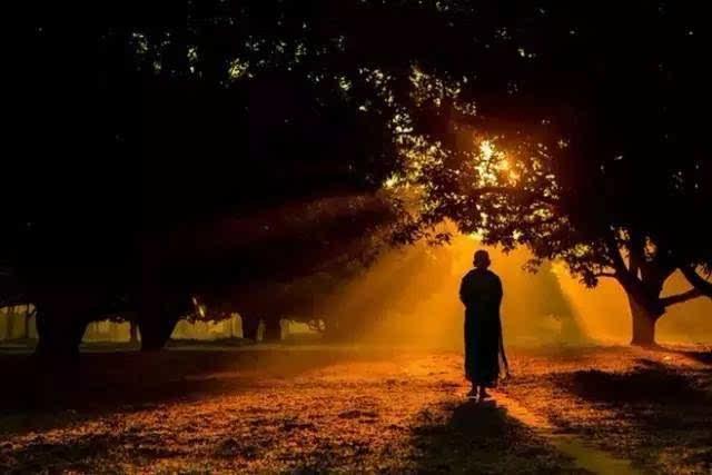 每日一禅:宁静来自于内心 - 清 雅 - 清     雅博客