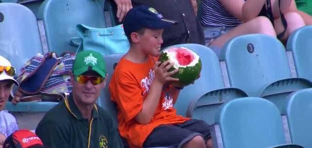 奥运小网红诞生!小男孩吃西瓜直接用啃图片