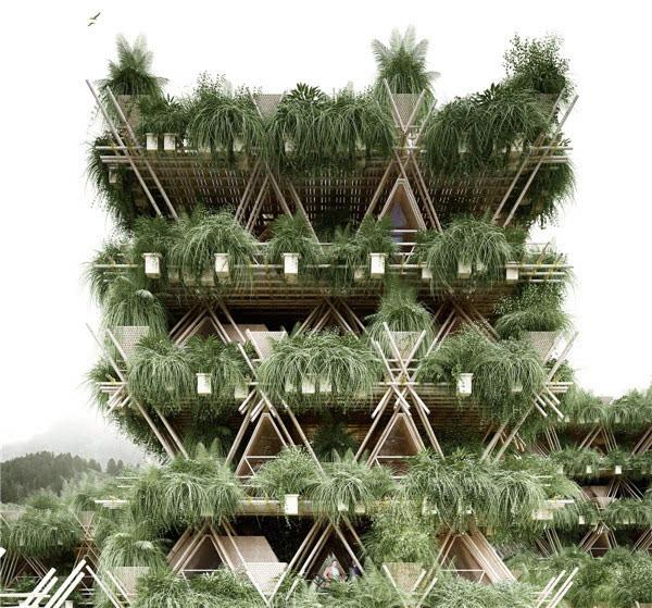 他用竹子打造一栋房子 却未使用一根钉子的照片 - 5