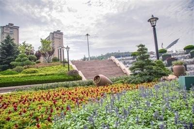主城区90多条道路增植背景树 市北投4亿实施绿化