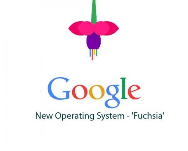 既然有了Android 谷歌为何还要从零开始开发新操作系统的照片