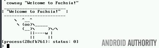 Google酝酿中名叫Fuchsia的神秘新系统的照片 - 3