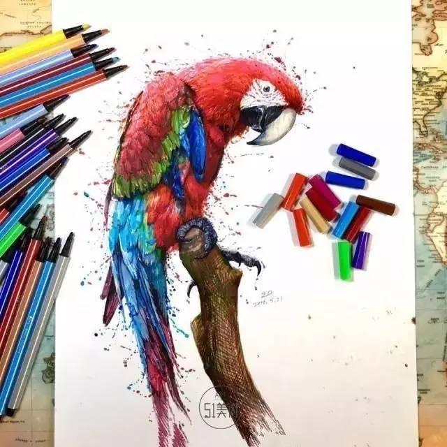 鹦鹉彩铅手绘图