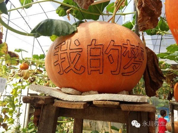 我的梦,中国梦!