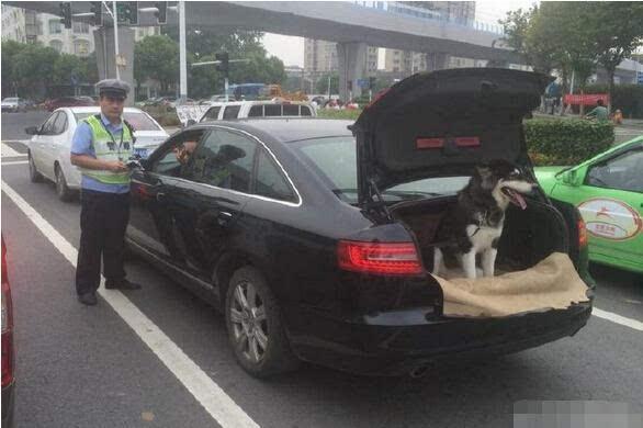 """""""后备箱不关,遮挡后视镜视线,有很大的行车安全隐患."""