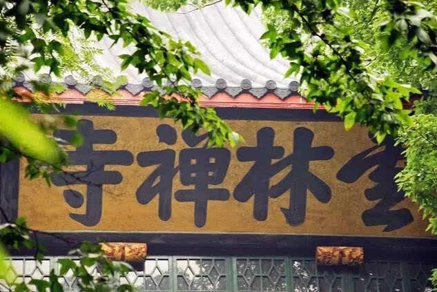 """正文  在西湖孤山北麓的放鹤亭里,竖立着康熙临摹董其昌所书的""""舞鹤赋"""