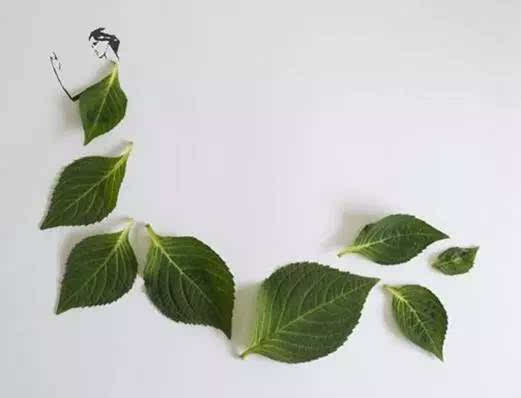 创意手工diy:小小树叶,大大变身!