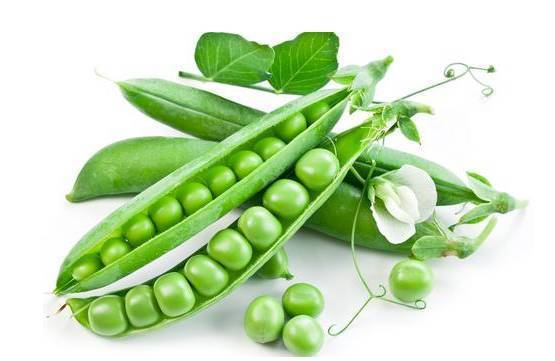 吃豌豆还有消肿,舒展皮肤的功能,能拉紧眼睛周围的皱纹.