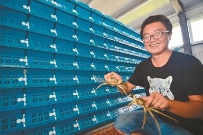 南通网讯 8月30日,海安县大公镇仲洋村返乡大学生许诗文开心地展示着