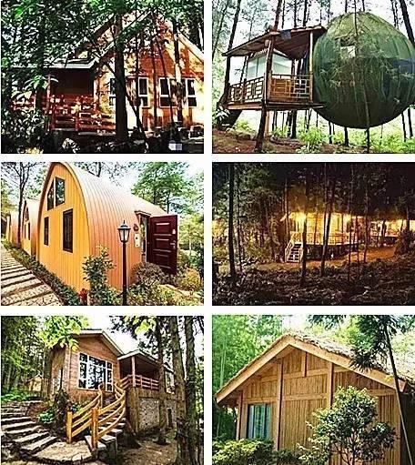 重庆最梦幻的森林小木屋