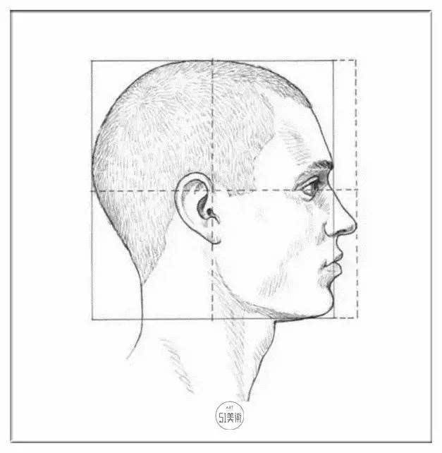 图2   第二个图示展现的是头部的侧面,脸的正面到后脑勺的距离与头顶到下颚的距离相等,即头部的侧面为正方形,唯一在此正方形以外的是鼻子,它的大小和形状各不同。   其他一些常用的头部比例参数是 :鼻子的长度小于眼睛到下颚距离的一半 ;从正面看,两眼之间的距离与单只眼睛的宽度相等。嘴到鼻子的距离比嘴到下颚的距离短,因此不要在鼻子底部和嘴巴之间留出太大距离。   从侧面看,耳朵位于头部的垂直中分线之后,它大致处于垂线的中点处。还有一种方法可以确定耳朵的位置,那就是耳朵的顶部应与眉毛处于一条水平线上