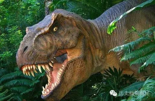 最全的恐龙的资料图片大全和名字