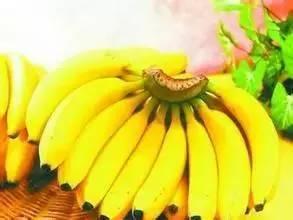 终于知道香蕉对女人多么厉害(组图)