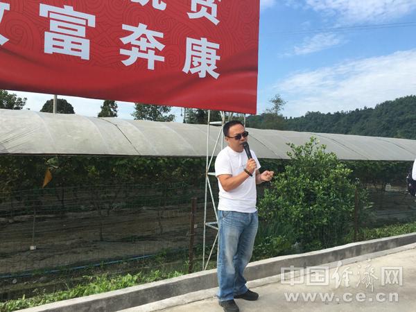 雅安市芦山县红星村第一书记何平接受记者采访.