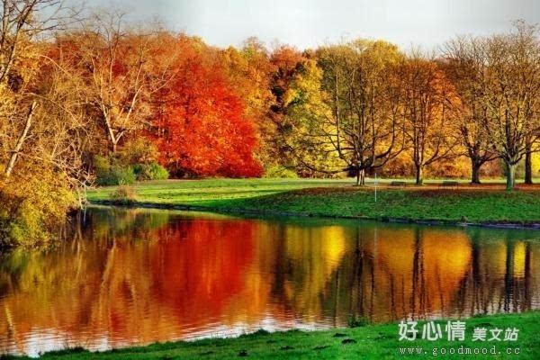形容秋天的优美句子,形容秋天的句子