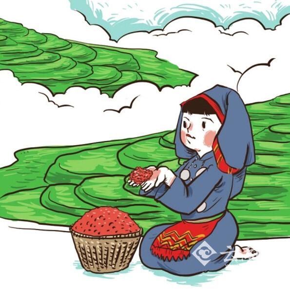 水稻生长卡通手绘