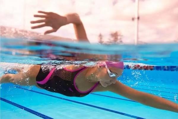 初学自由泳,这三大基本动作你都掌握了吗?