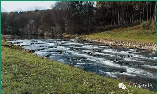 塔里木河流域综合治理的对策措施