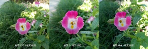 魅蓝Max照相评测:对比魅蓝E与魅蓝U20的照片 - 42