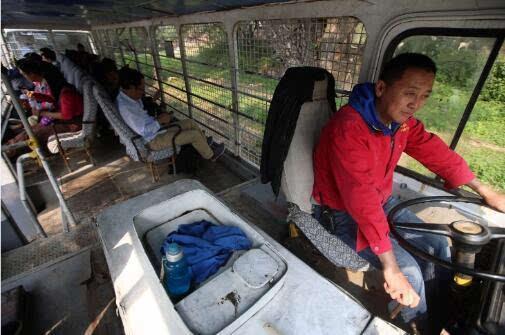八达岭野生动物园猛兽区 有游客拿白菜喂老虎