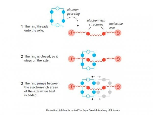 2016年诺贝尔化学奖:分子机器将在未来25-30年内出现的照片 - 4