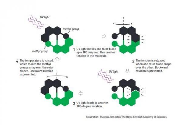 2016年诺贝尔化学奖:分子机器将在未来25-30年内出现的照片 - 7
