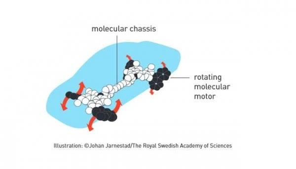 2016年诺贝尔化学奖:分子机器将在未来25-30年内出现的照片 - 8