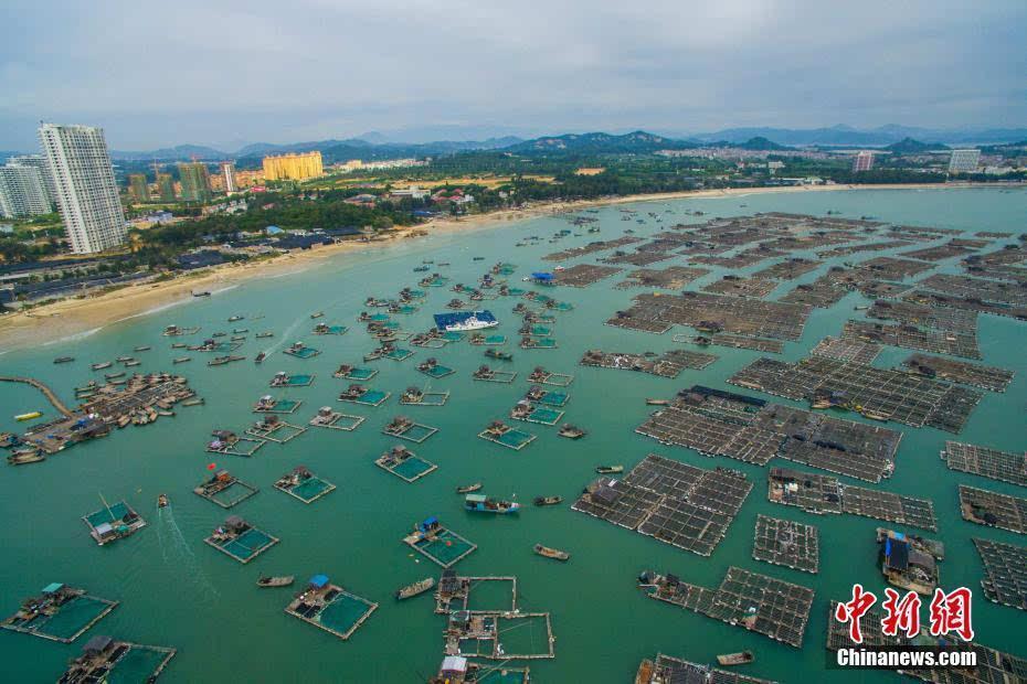 东山县,是福建省第二大岛,中国第七大岛,介于厦门市和广东省汕头之间