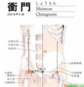 肝脏解剖结构示意图