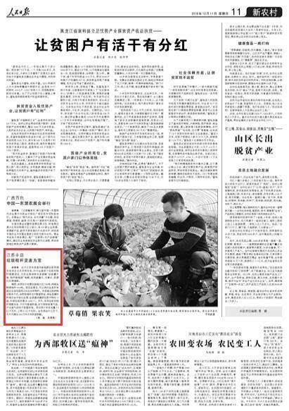 """江苏丰县垃圾秸秆变废为宝 破解综合利用难题"""""""