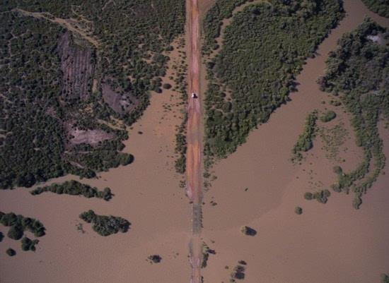 """不可思议澳荒漠中现大片绿洲 生机盎然"""""""